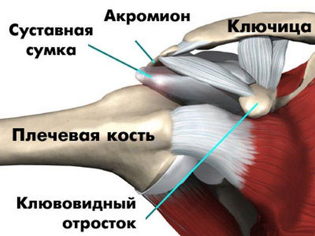 гимнастика попова при плечелопаточном периартрите отзывы