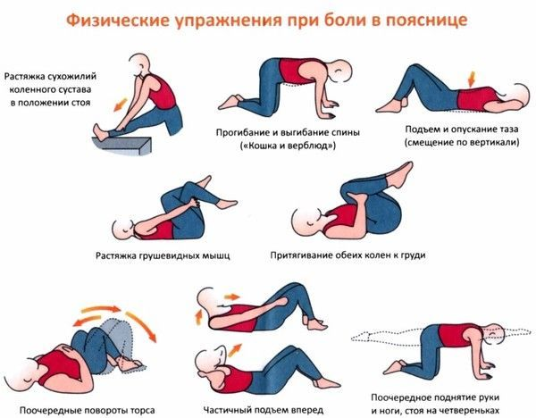 лечебная гимнастика поясничного отдела позвоночника при остеохондрозе