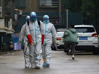 Хантавирус в китае 2020